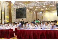 第十二届全国土力学及岩土工程学术大会 (59)