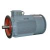 新产品 YCZ系列长螺旋钻孔机用电机